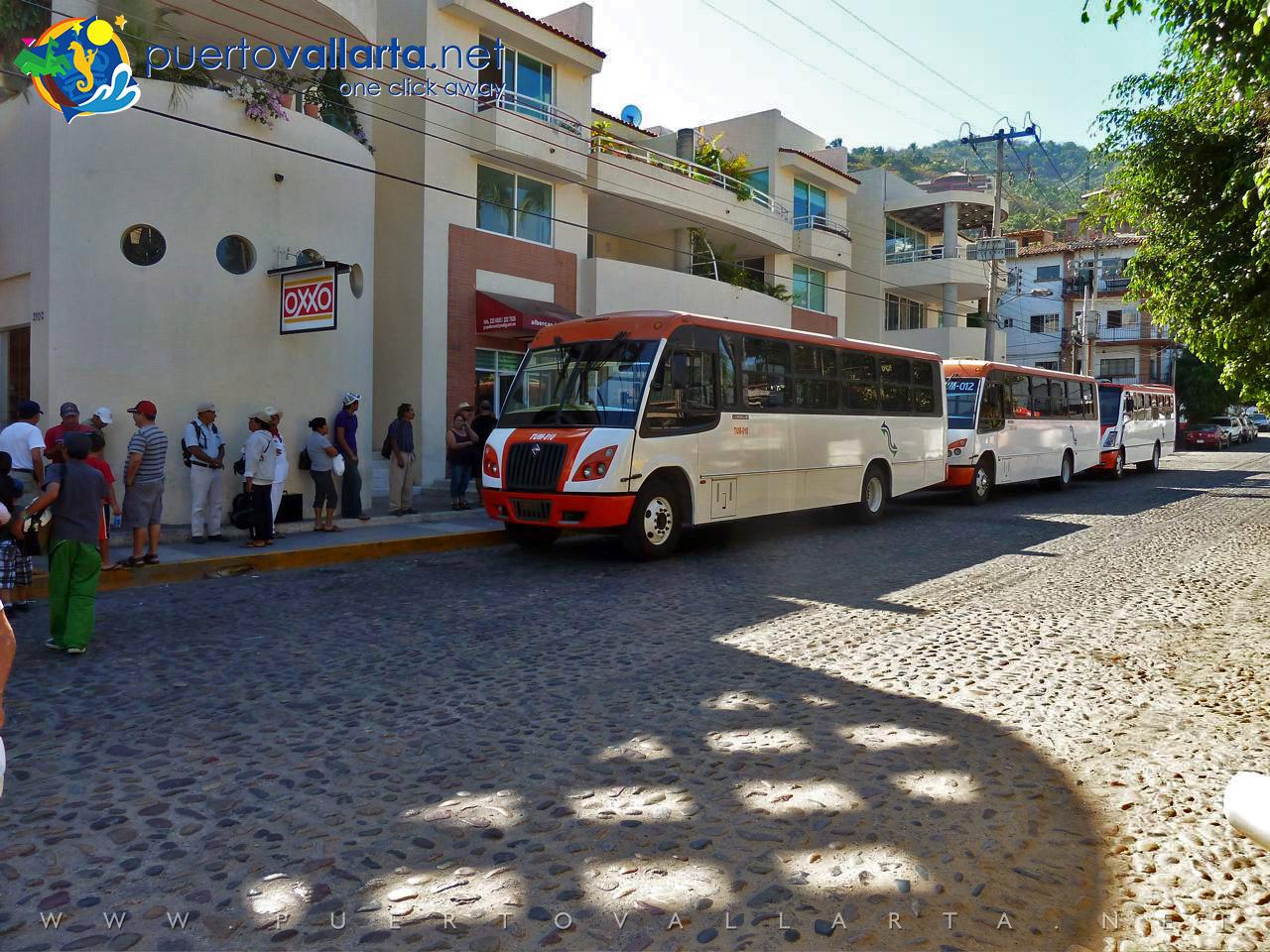 Bus to Puerto Vallarta Zoo and Mismaloya