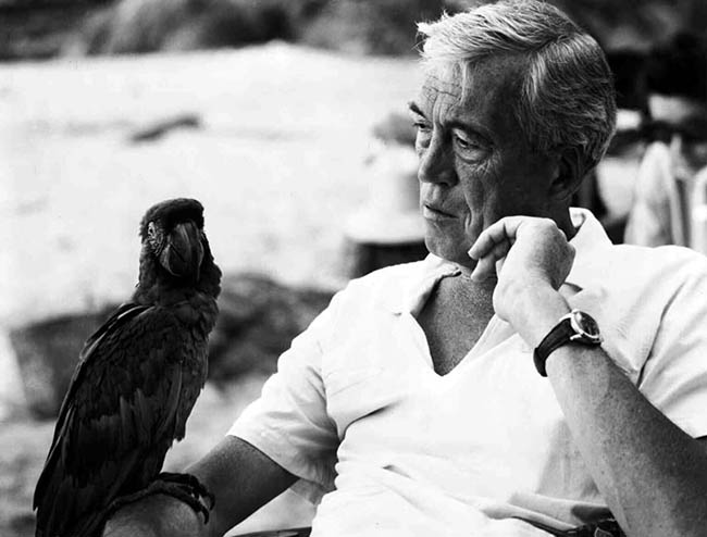 John Huston, directing The Night of the Iguana