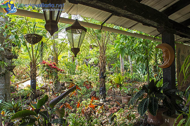 Vallarta Botanical Gardens Offer 20 Acres Of Land, With Botanical  Collections Featuring Over 3 Thousand Different Plant Species.