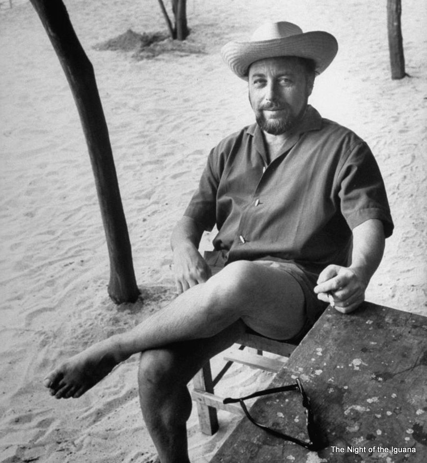 Tennessee Williams in Puerto Vallarta, he helped on the script