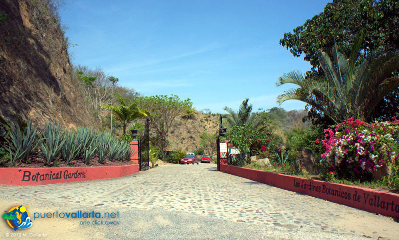 Vallarta Botanical Gardens Review
