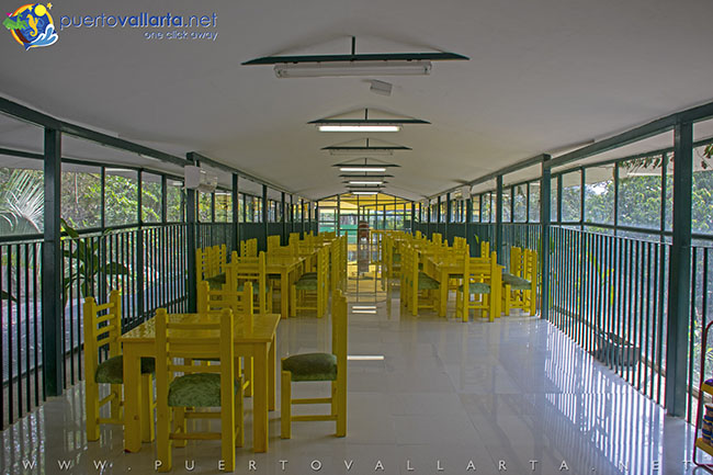 Canteen at the zoo