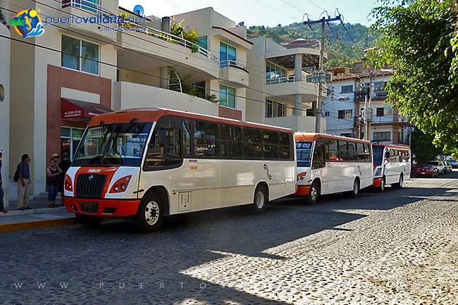 Buses to Mismaloya and Vallarta Zoo