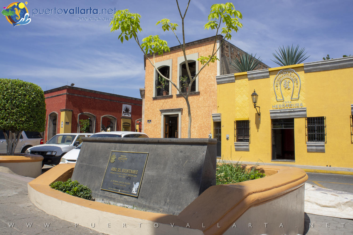 The Bicentennial Tree, Tequila Main Square