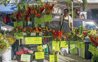 Flower Arrangements Old Town Farmers Market Romantic Zone Puerto Vallarta